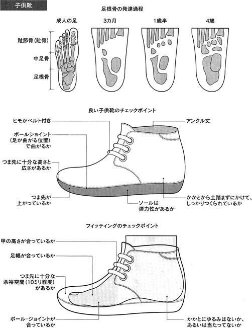 子供用の靴のこと。サイズ・レンジで言うと、JIS(日本工業規格)の子供用サイズ表には、足長10.5~26.0センチまで、5ミリ等差で規定されている。