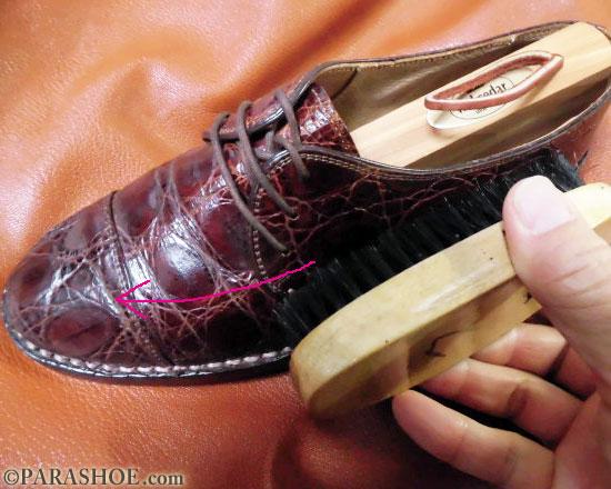 靴をブラッシングする