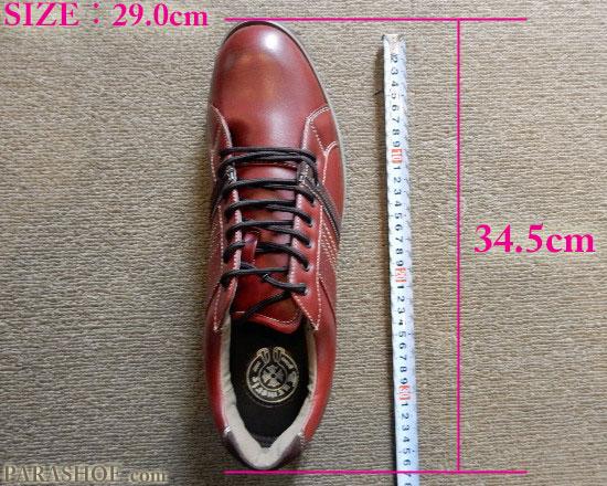 JIS規格で作られた、29.0cmの国内スニーカーのソール全長