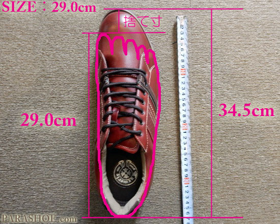 JIS規格で作られた、29.0cmの国内スニーカーの足入れイメージ